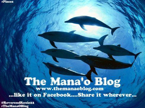 Dolphins_Mana_O_Blog_Meme
