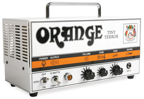 OrangeTinyTerrorHeadBig